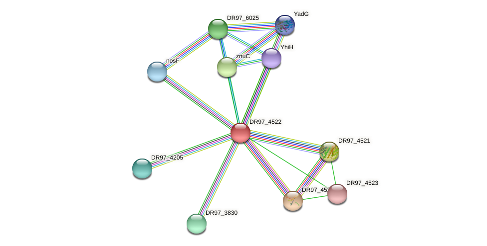 DR97_4522 protein (Pseudomonas aeruginosa) - STRING interaction network