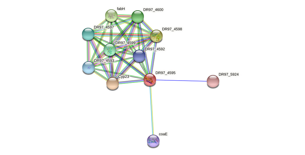 DR97_4595 protein (Pseudomonas aeruginosa) - STRING interaction network