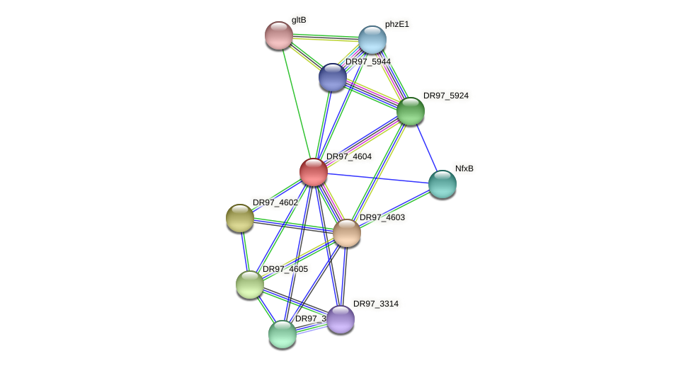 DR97_4604 protein (Pseudomonas aeruginosa) - STRING interaction network