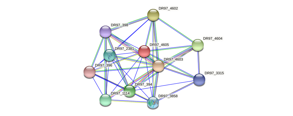 DR97_4605 protein (Pseudomonas aeruginosa) - STRING interaction network