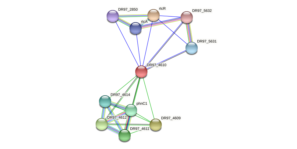 DR97_4610 protein (Pseudomonas aeruginosa) - STRING interaction network