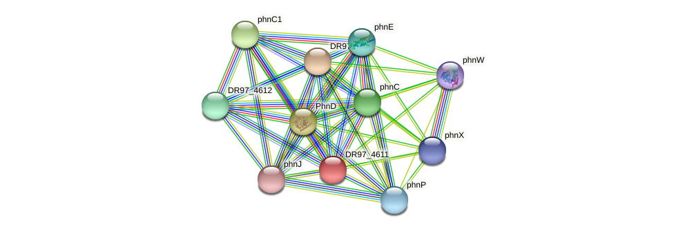 DR97_4611 protein (Pseudomonas aeruginosa) - STRING interaction network