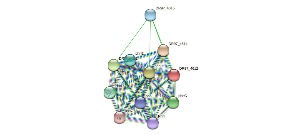 DR97_4612 protein (Pseudomonas aeruginosa) - STRING interaction network