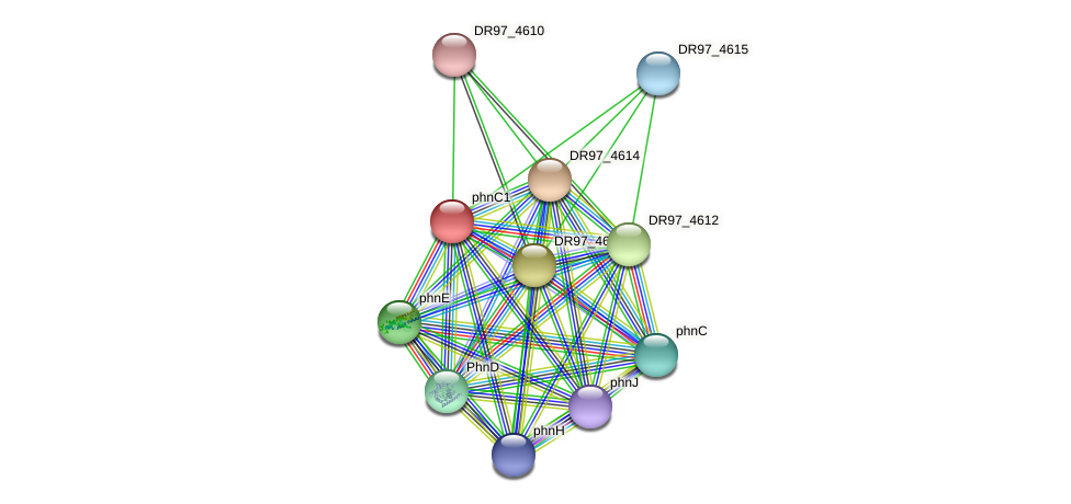 DR97_4613 protein (Pseudomonas aeruginosa) - STRING interaction network