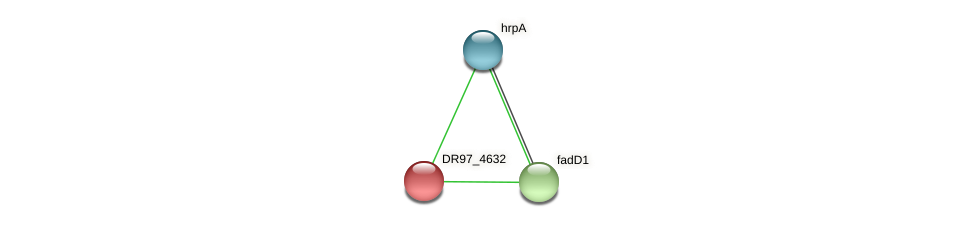 DR97_4632 protein (Pseudomonas aeruginosa) - STRING interaction network