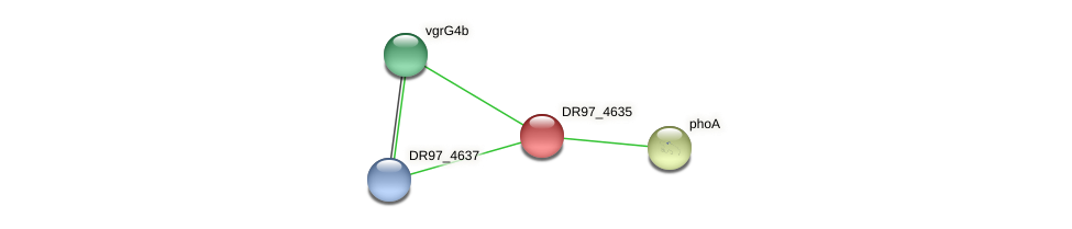 DR97_4635 protein (Pseudomonas aeruginosa) - STRING interaction network
