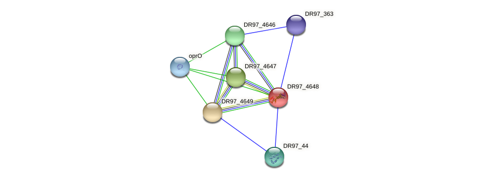 DR97_4648 protein (Pseudomonas aeruginosa) - STRING interaction network