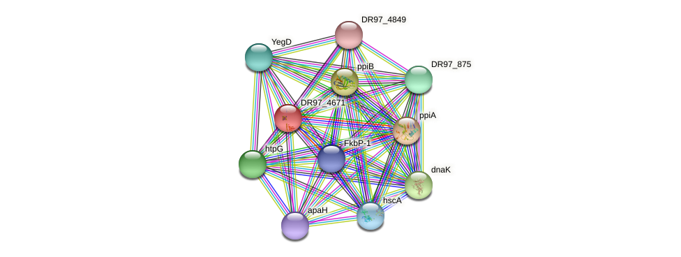 DR97_4671 protein (Pseudomonas aeruginosa) - STRING interaction network
