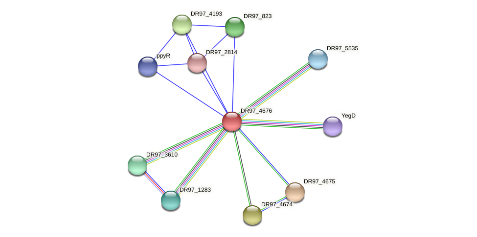 DR97_4676 protein (Pseudomonas aeruginosa) - STRING interaction network