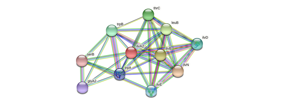 ilvA3 protein (Pseudomonas aeruginosa) - STRING interaction network