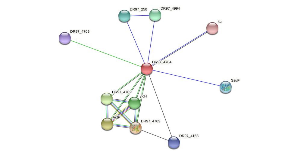DR97_4704 protein (Pseudomonas aeruginosa) - STRING interaction network