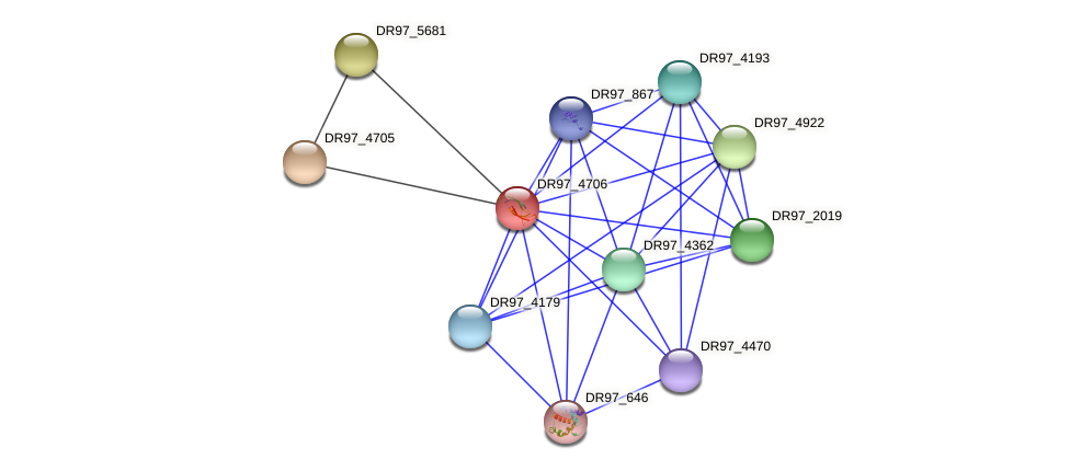 DR97_4706 protein (Pseudomonas aeruginosa) - STRING interaction network
