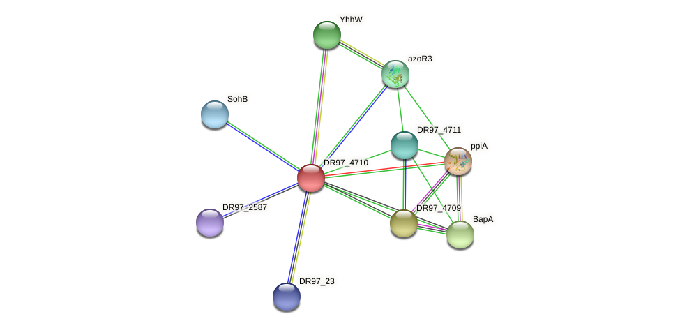 DR97_4710 protein (Pseudomonas aeruginosa) - STRING interaction network