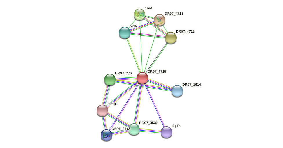 DR97_4715 protein (Pseudomonas aeruginosa) - STRING interaction network
