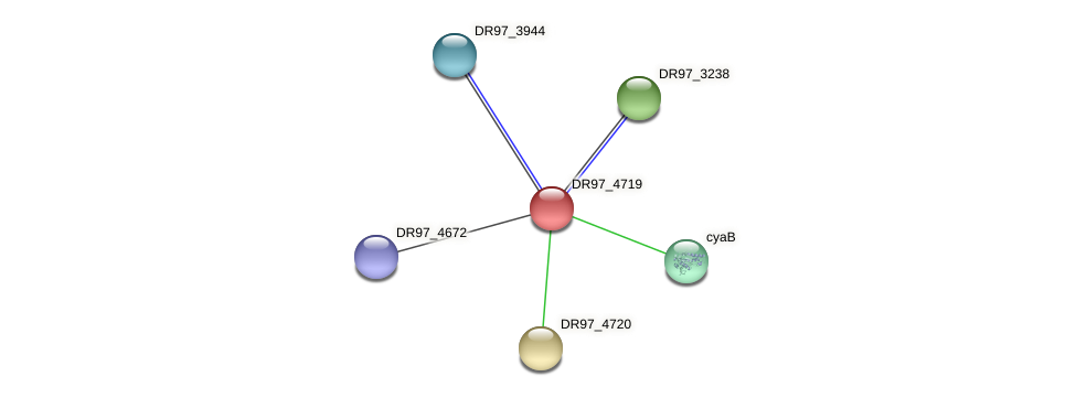 DR97_4719 protein (Pseudomonas aeruginosa) - STRING interaction network
