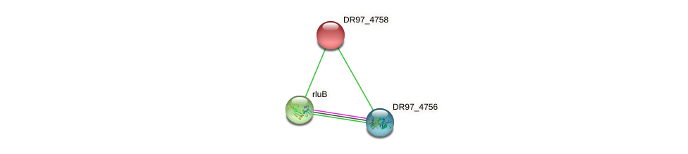 DR97_4758 protein (Pseudomonas aeruginosa) - STRING interaction network