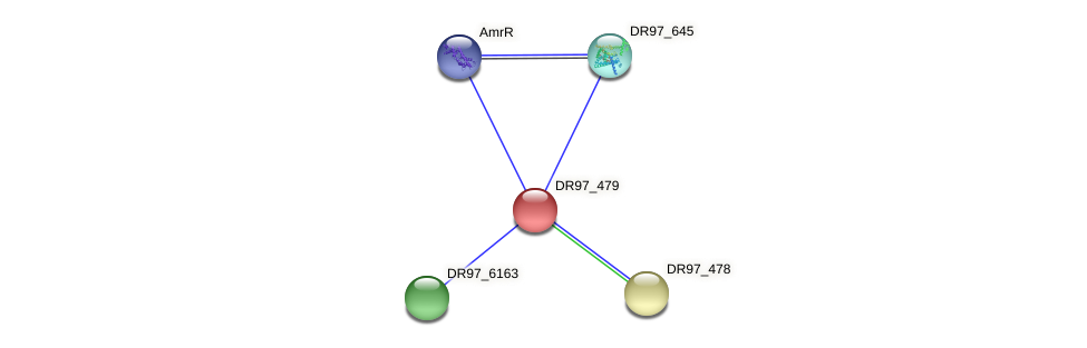DR97_479 protein (Pseudomonas aeruginosa) - STRING interaction network