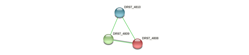 DR97_4808 protein (Pseudomonas aeruginosa) - STRING interaction network