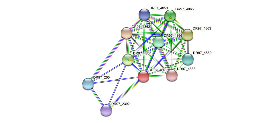 DR97_4861 protein (Pseudomonas aeruginosa) - STRING interaction network