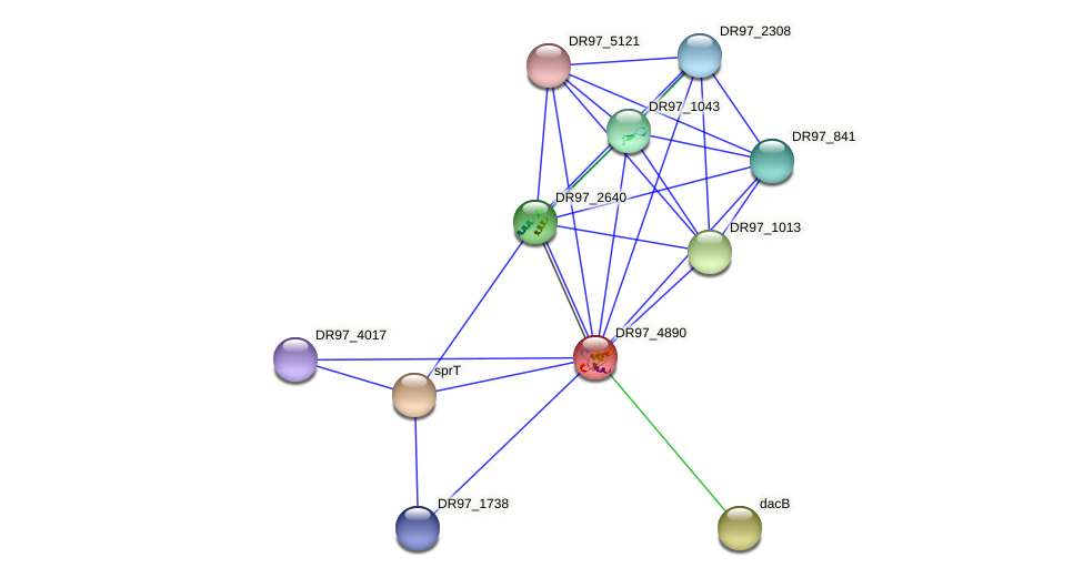 DR97_4890 protein (Pseudomonas aeruginosa) - STRING interaction network