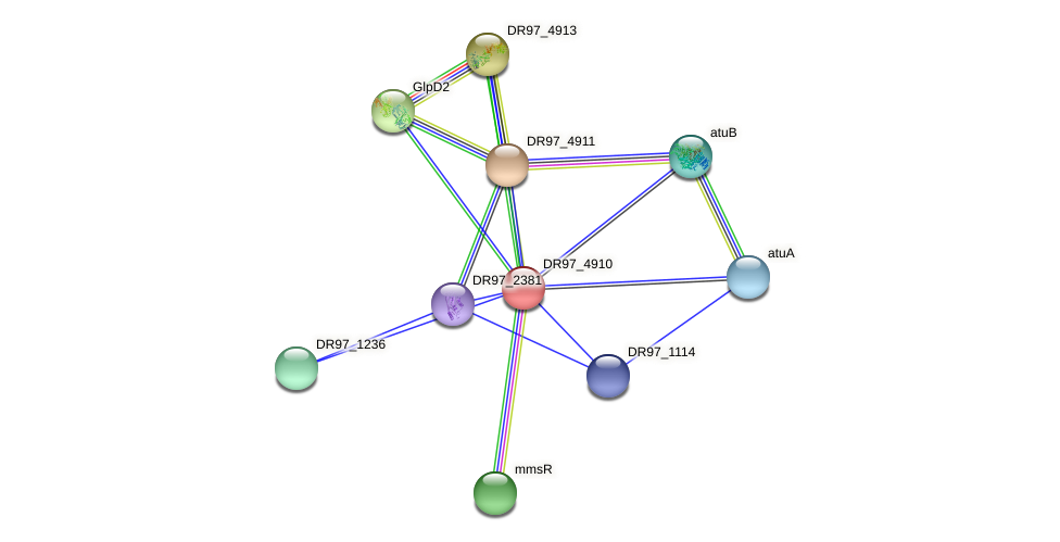 DR97_4910 protein (Pseudomonas aeruginosa) - STRING interaction network
