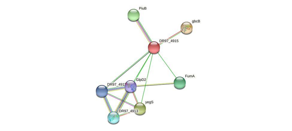 DR97_4915 protein (Pseudomonas aeruginosa) - STRING interaction network