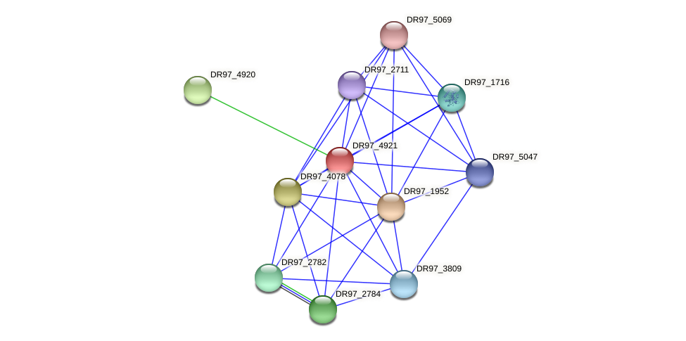 DR97_4921 protein (Pseudomonas aeruginosa) - STRING interaction network