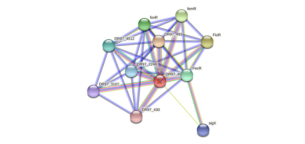 fecI_2 protein (Pseudomonas aeruginosa) - STRING interaction network