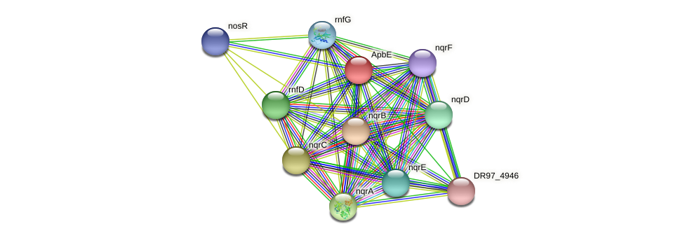 apbE protein (Pseudomonas aeruginosa) - STRING interaction network