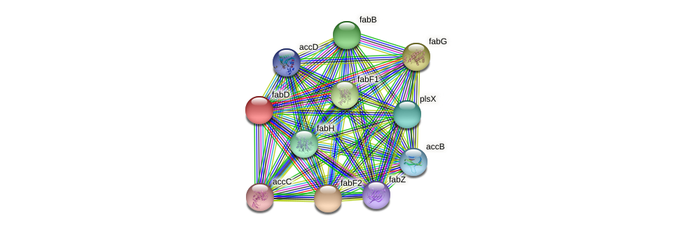 fabD protein (Pseudomonas aeruginosa) - STRING interaction network
