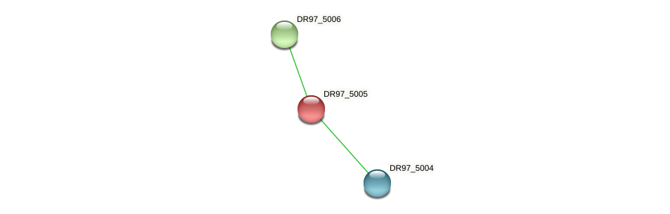 DR97_5005 protein (Pseudomonas aeruginosa) - STRING interaction network
