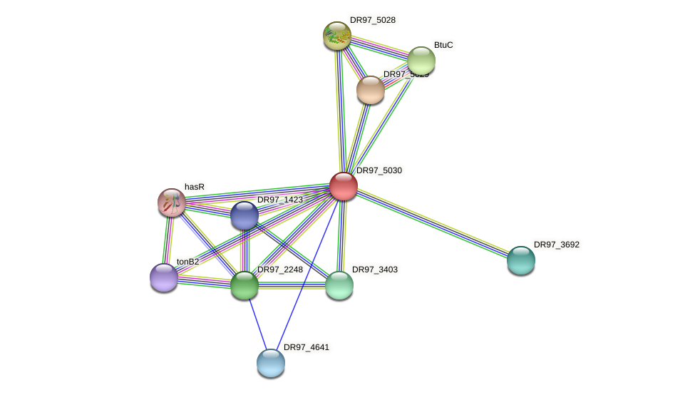 DR97_5030 protein (Pseudomonas aeruginosa) - STRING interaction network