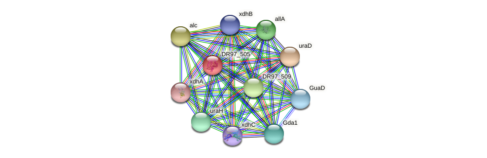 DR97_505 protein (Pseudomonas aeruginosa) - STRING interaction network