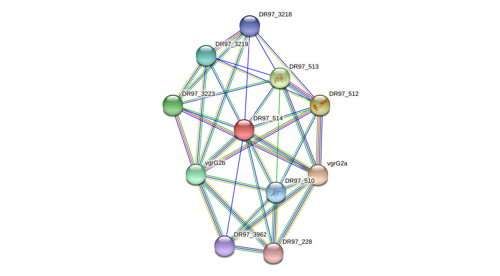 DR97_514 protein (Pseudomonas aeruginosa) - STRING interaction network