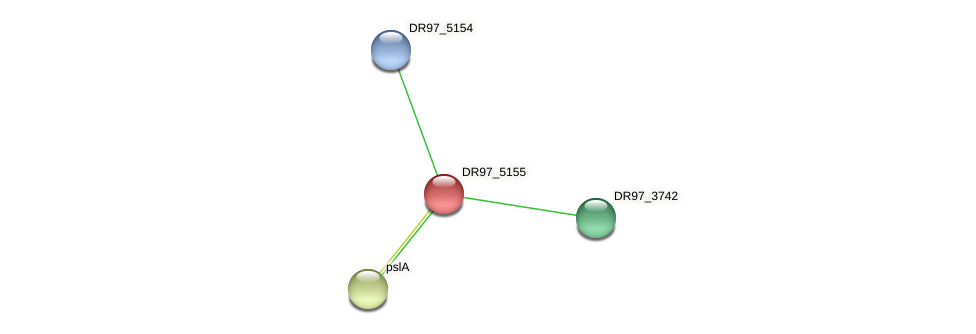 DR97_5155 protein (Pseudomonas aeruginosa) - STRING interaction network