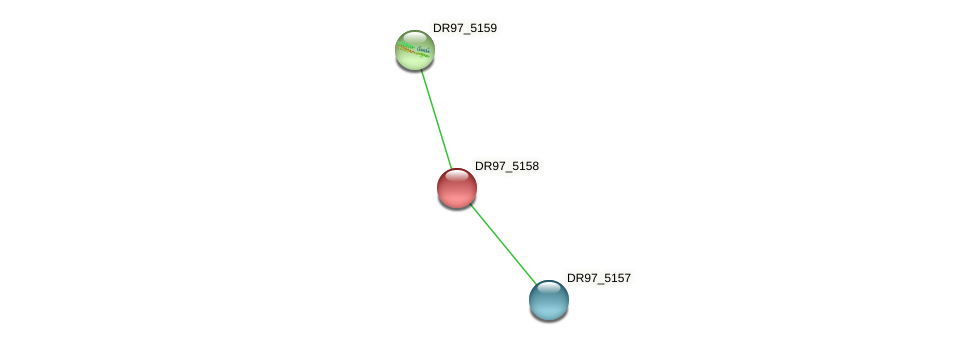 DR97_5158 protein (Pseudomonas aeruginosa) - STRING interaction network