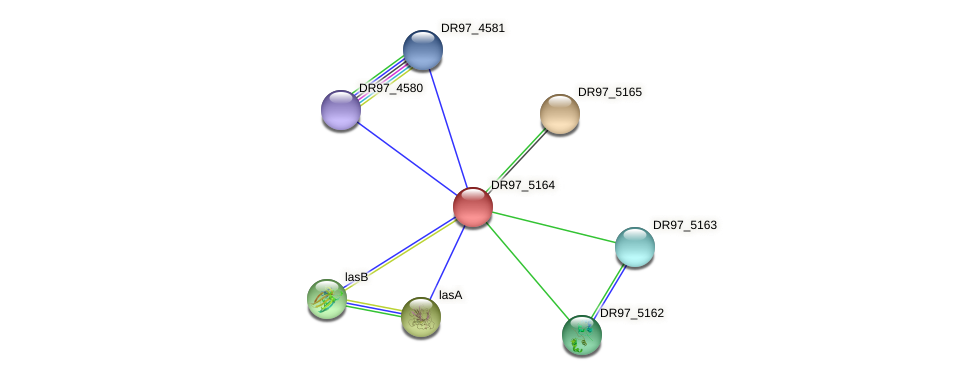 DR97_5164 protein (Pseudomonas aeruginosa) - STRING interaction network