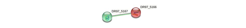 DR97_5166 protein (Pseudomonas aeruginosa) - STRING interaction network