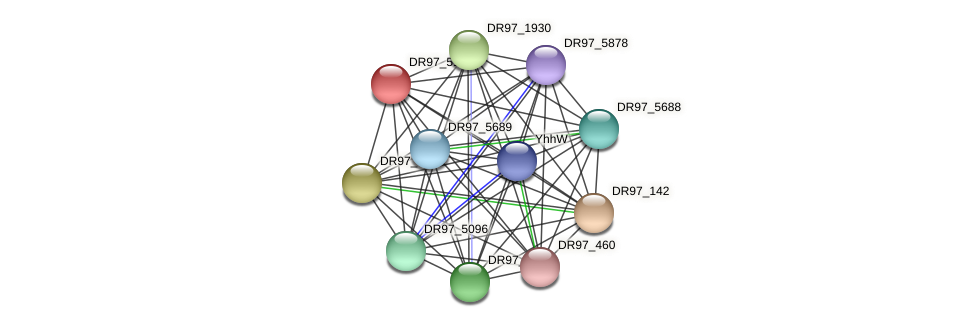 DR97_5194 protein (Pseudomonas aeruginosa) - STRING interaction network