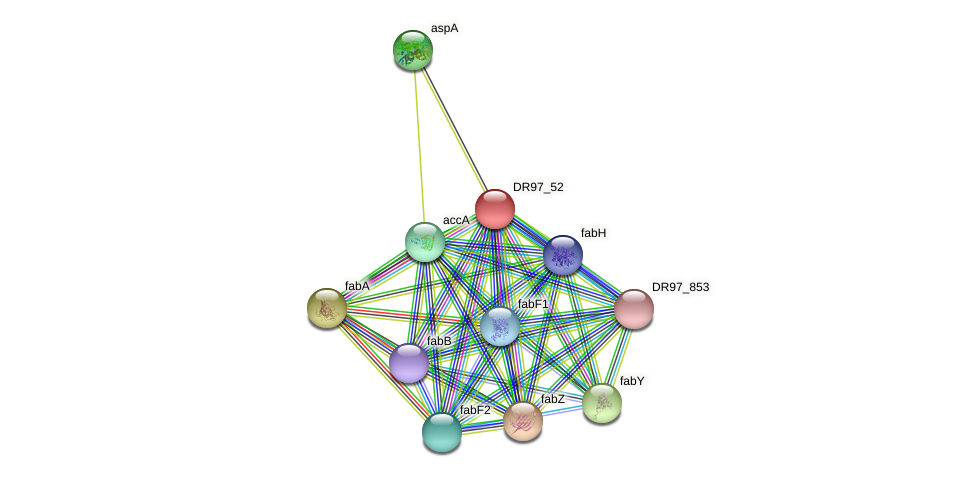 DR97_52 protein (Pseudomonas aeruginosa) - STRING interaction network
