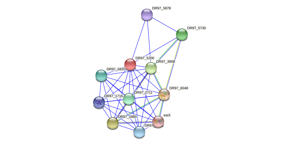 DR97_5200 protein (Pseudomonas aeruginosa) - STRING interaction network