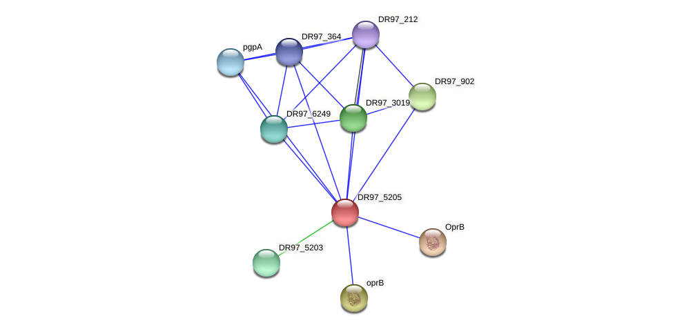 DR97_5205 protein (Pseudomonas aeruginosa) - STRING interaction network