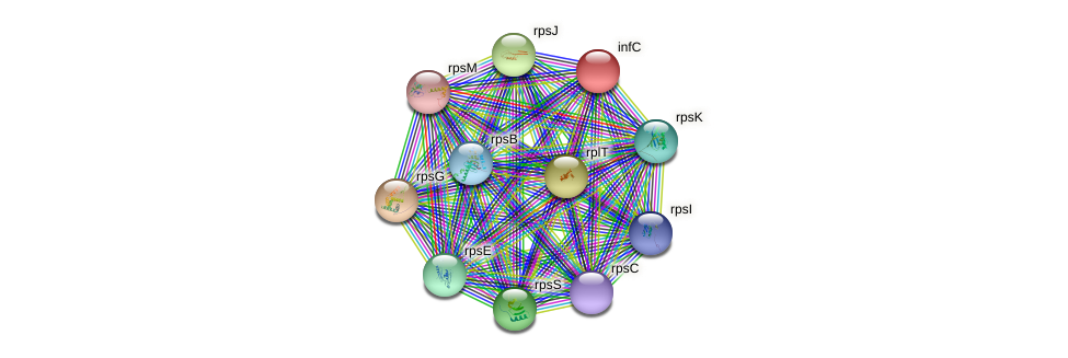 infC protein (Pseudomonas aeruginosa) - STRING interaction network