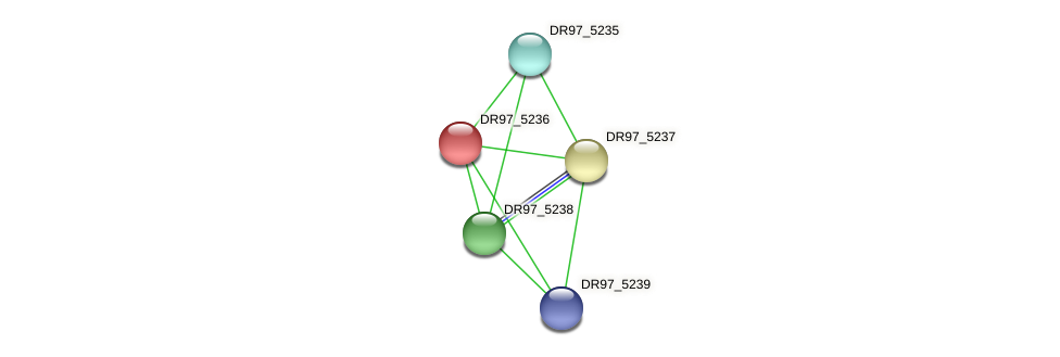 DR97_5236 protein (Pseudomonas aeruginosa) - STRING interaction network