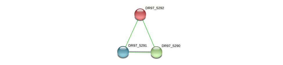 DR97_5292 protein (Pseudomonas aeruginosa) - STRING interaction network