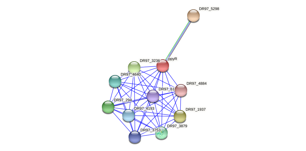 DR97_5297 protein (Pseudomonas aeruginosa) - STRING interaction network