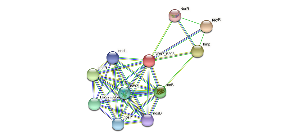 DR97_5298 protein (Pseudomonas aeruginosa) - STRING interaction network