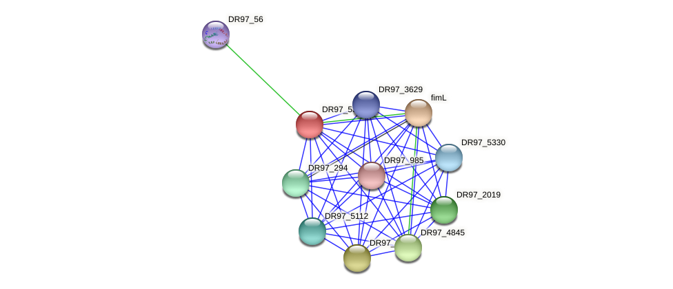 DR97_53 protein (Pseudomonas aeruginosa) - STRING interaction network