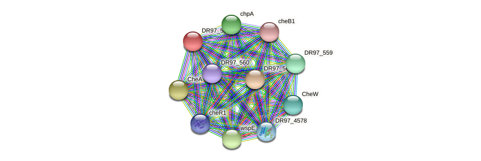 DR97_5309 protein (Pseudomonas aeruginosa) - STRING interaction network