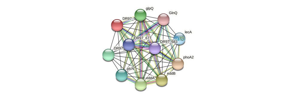 DR97_5327 protein (Pseudomonas aeruginosa) - STRING interaction network